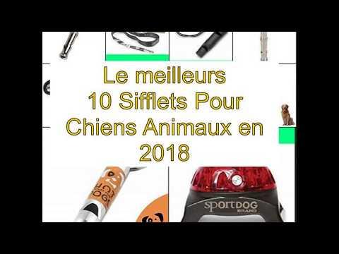 Le Meilleurs 10 Sifflets Pour Chiens Animaux En 2018