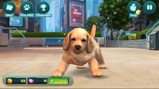 Kinectimals Unleashed PC gameplay HD