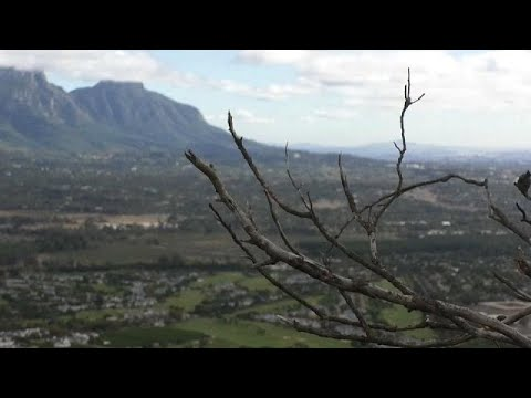 Засуха в Кейптауне