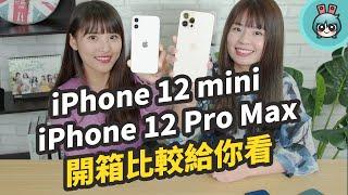 iPhone 12 mini 和 iPhone 12 Pro Max 也到手啦!全系列四款手機 一起比較實測給你看
