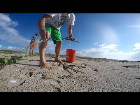 Marine Debris Survey - by The Reserve