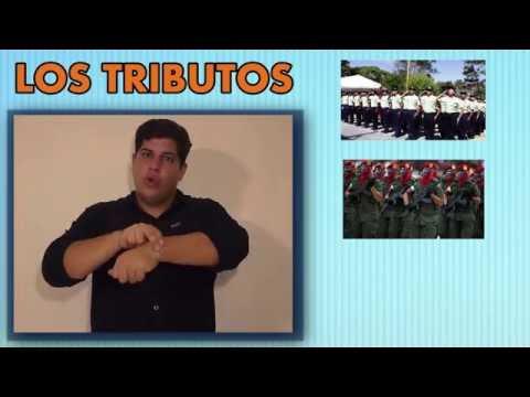 Cultura Tributaria en Lengua de Señas Venezolana (LSV)