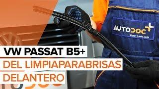 Montaje Escobillas de Limpiaparabrisas delanteras y traseras VW PASSAT Variant (3B5): vídeo gratis