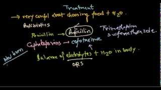 Escherichia coli treatment