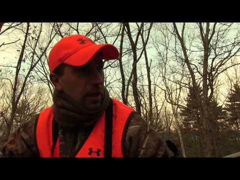 Armand Quabbin Reservoir Deer 2014