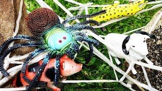 Животные. Огромный ПАУК нападает на Животных! Мультик про Животных и Паука для детей Игрушки ТВ