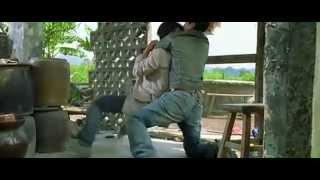 بطل أفلام الكونغ فو (دوني ين)
