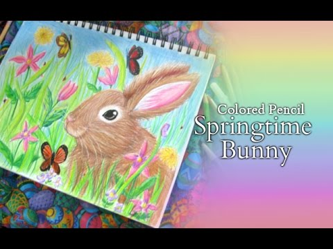 Springtime Bunny Colored Pencil Illustration  YouTube