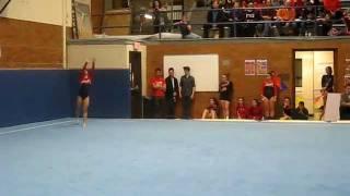 Niles West gymnastics at CSL South Meet