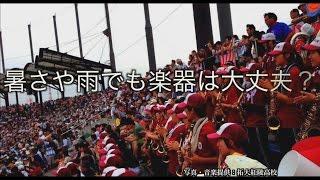甲子園でよく聞くこの曲、拓大紅陵がオリジナルって知っていましたか? ...