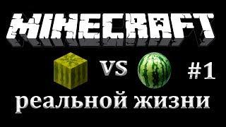 #minecraft vs реальная жизнь #1