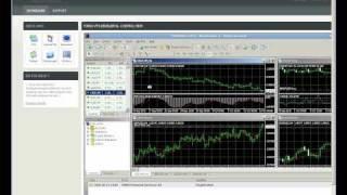 Forex VPS Metatrader JForex Bridge