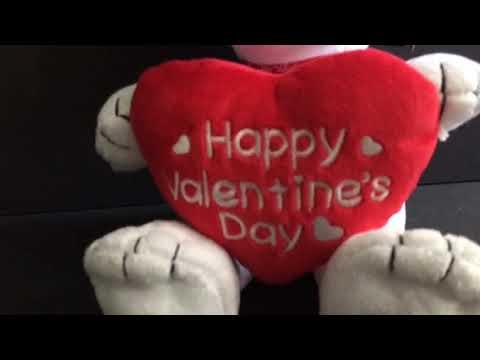 Musical Snoopy Plush Valentine's Day Gift eBay