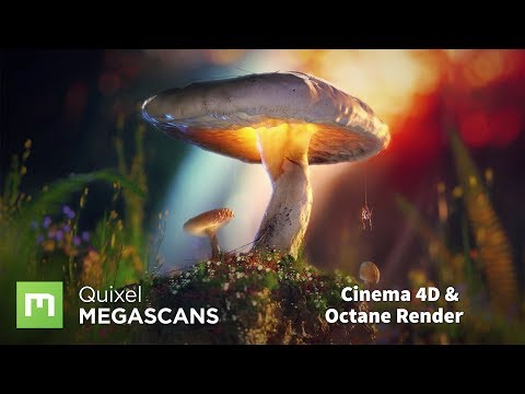 How to create scenes using Megascans with Octane and Cinema 4D