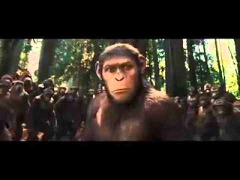 Hollywood movie trailer 3gp free download the epickniss movie.