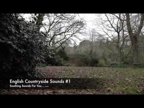 English Countryside Sounds #1 (8hr)
