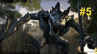 Прохождение игры Elder Scrolls Online #5
