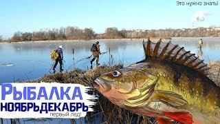 У какой рыбы жор по первому льду? Какая рыба лучше клюет на зимней рыбалке по первому льду?