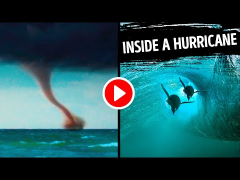 What Happens Underwater During A Hurricane