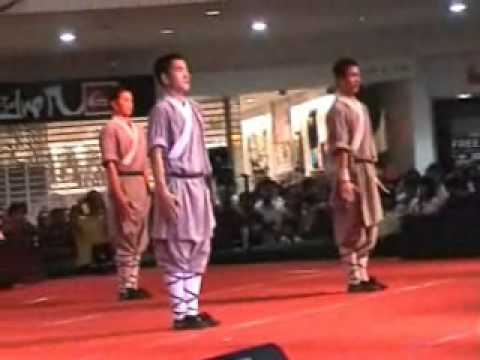 Real Chinese traditional Shaolin Kung Fu, Tai Chi and Chi Gong   Video B