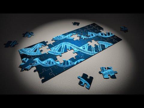 Epigenética e óleos essenciais 100% puros, orgânicos e com CPTG!