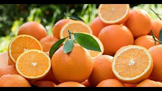Green Synthesis of Copper Nanoparticles Using Mandarin (Citrus reticulata) Peel Extract