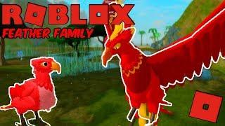 Roblox Feder Familie - PHOENIX! (WARUM IST DIESES SPIEL SO BELIEBT?)