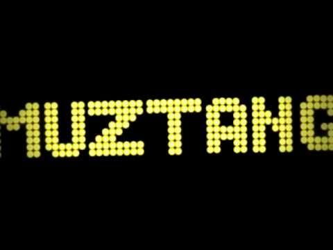 Satcf - Party Line (Muztang Remix).wmv