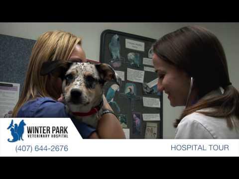 Winter Park Veterinary Hospital - Winter Park, Florida