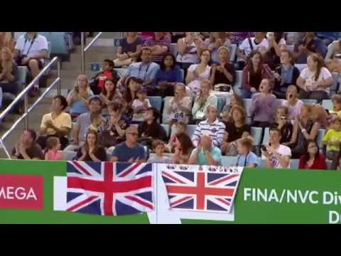 2015 World Series Dubai - Men's 10m Platform Final