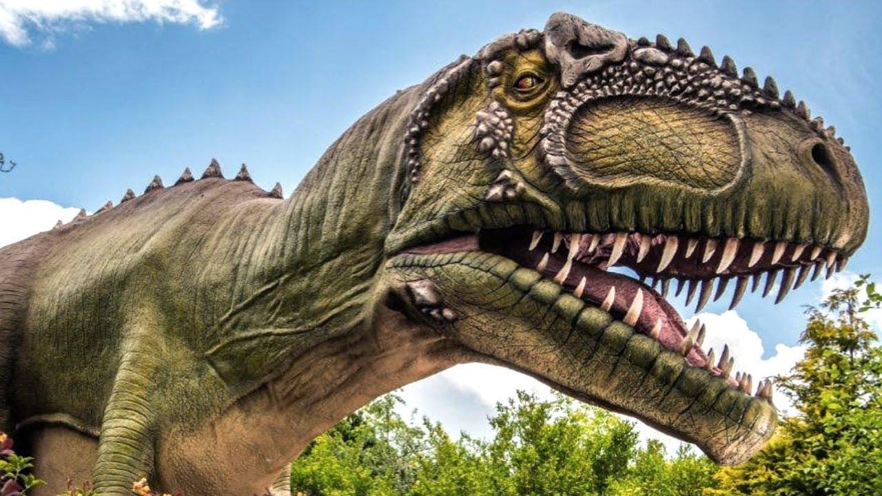 Výsledek obrázku pro Giganotosaurus