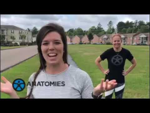 Anatomies Anywhere- Plank Run
