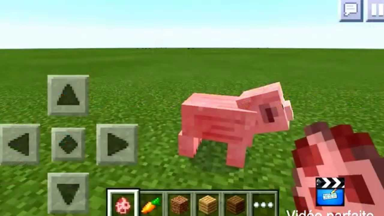 Comment dresser un cochon minecraft pe youtube - Minecraft cochon ...