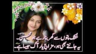 sad song with urdu poetry ya rabba