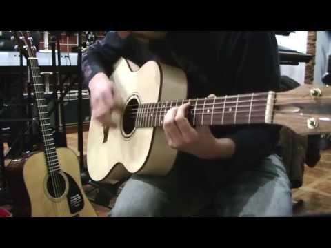 Обзор гитары Forest Group