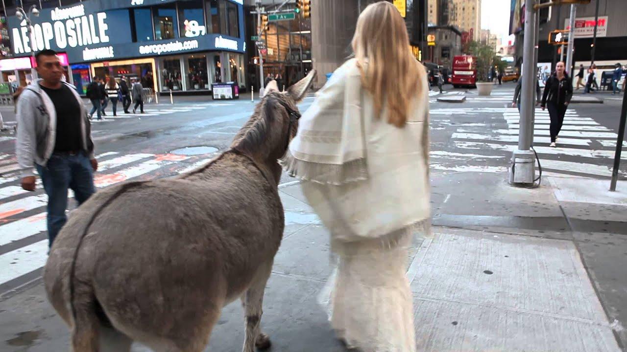 Tyronista Ashley walks Señor Tyrone's Burro through Times Square