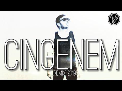 Zamiq M  - Çingenem 2019  | AZERİ Version | Remix
