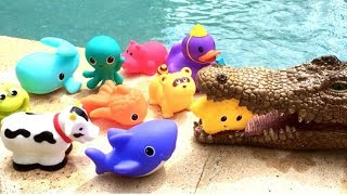 Sea Animals in Pool For Babies Learn Colors Turtle Fish Shark Toy Videos For Kids