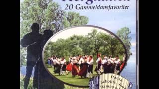 Avestaforsens brus - Avesta Forsens noise
