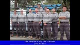 Pest Control Darien Ct: Pest Control & Exterminator Services Free Home Inspection