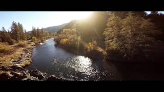fishing for steelhead on the trinity river with the kennedy brothers