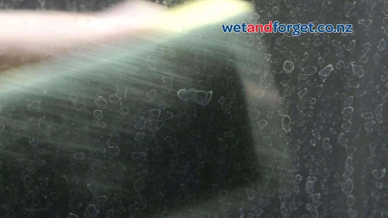 tigeru0027s paw shower glass restorer by wet u0026 forget