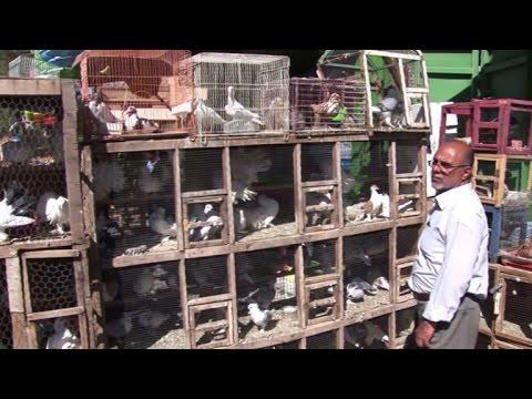 """العراقيون يرتادون """"سوق الغزل"""" في بغداد"""