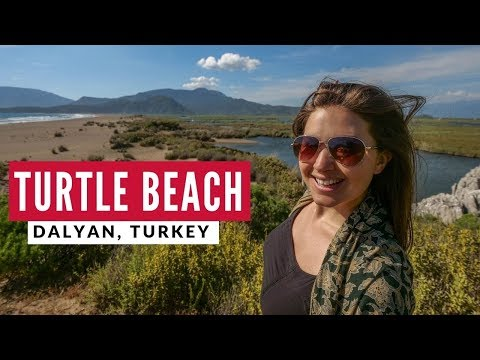 "Turkey's Turtle Beach + Pide ""Turkish Pizza"" | Dalyan | Full Time World Travel Vlog 4"