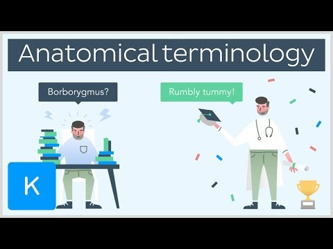 Why you need anatomical terminology as a healthcare professional - series intro  |Kenhub