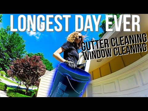 Longest Day Ever Cleaning Gutters & Windows