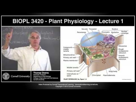 BIOPL3420 - Plant Physiology - Lecture 1