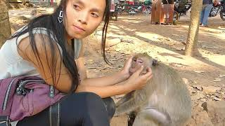 Lucy Oldest monkey like Lady massage to her, Second time Lady meet Lucy