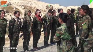 غرفة الأخبارسياسة  أكراد إيرانيون يشاركون في تحرير الموصل
