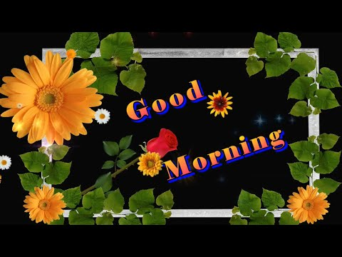 Good Morning Video,Wishes,Message,Quotes